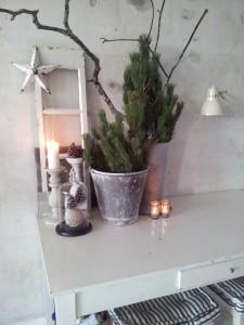 Decemberhygge med fyrgrene & grene blæste ned af en storm i zinkpotter.....